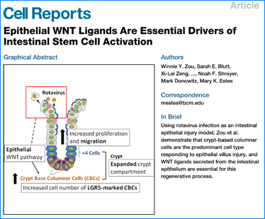 ISCC Labs Published in Cell Reports